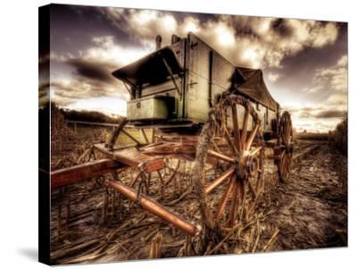 Harvest-Stephen Arens-Stretched Canvas Print