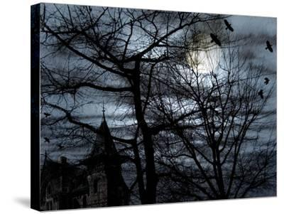 Dark Shadows-Katherine Sanderson-Stretched Canvas Print