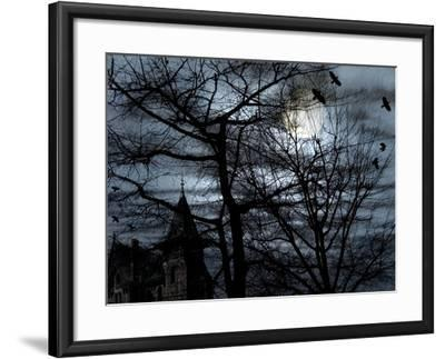 Dark Shadows-Katherine Sanderson-Framed Photographic Print