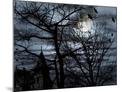 Dark Shadows-Katherine Sanderson-Mounted Photographic Print