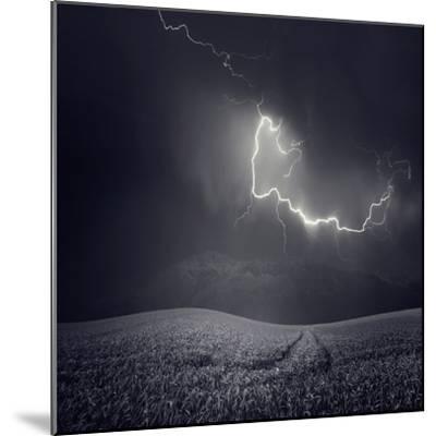 Zootz-Luis Beltran-Mounted Photographic Print
