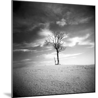 The Last-Craig Roberts-Mounted Photographic Print