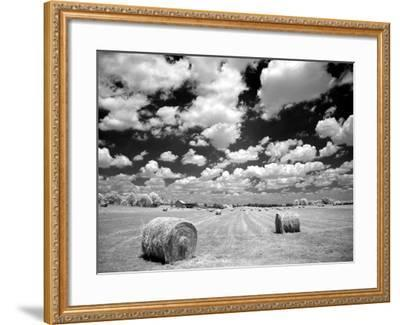 A Hayfield with Summer Clouds-Rip Smith-Framed Photographic Print