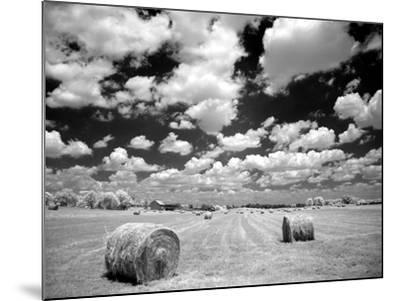 A Hayfield with Summer Clouds-Rip Smith-Mounted Photographic Print
