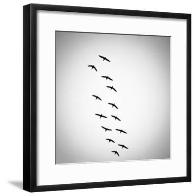 Lucky Thirteen-Sharon Wish-Framed Photographic Print
