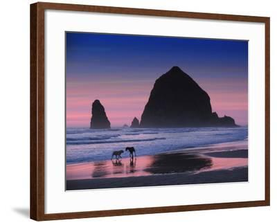 Dogs at Cannon Beach-Jody Miller-Framed Photographic Print