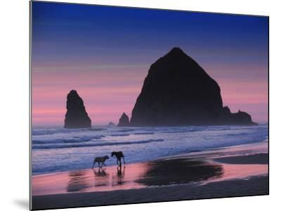 Dogs at Cannon Beach-Jody Miller-Mounted Photographic Print