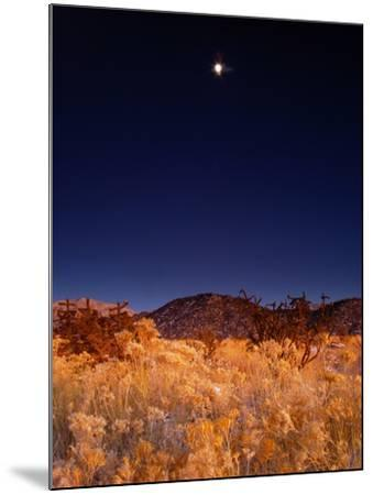 Sandia Mountains Desert Twilight Landscape Moon Rise, New Mexico-Kevin Lange-Mounted Photographic Print