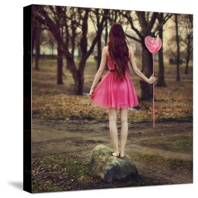 Dream Catcher-Iness Rychlik-Stretched Canvas Print
