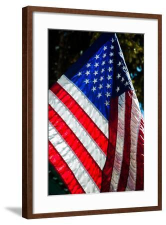 Stars and Stripes-Craig Howarth-Framed Photographic Print