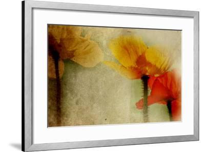 Poppies Talking-Mia Friedrich-Framed Photographic Print