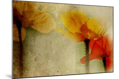 Poppies Talking-Mia Friedrich-Mounted Photographic Print
