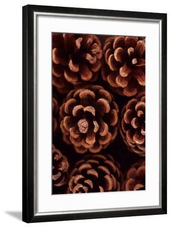 Pine Cones-Den Reader-Framed Photographic Print