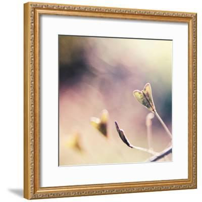 About You-Maria J Campos-Framed Photographic Print
