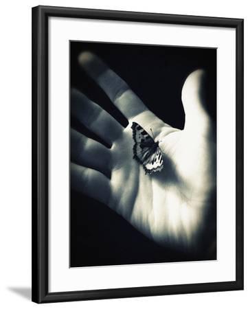 Summers Last Flight-Tim Kahane-Framed Photographic Print