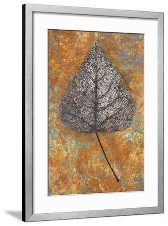 Close Up of Brown and Bleached Autumn or Winter Leaf of Black Poplar or Populus Nigra Tree-Den Reader-Framed Photographic Print