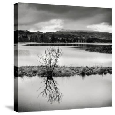 Rural Landscape with Lake-Craig Roberts-Stretched Canvas Print
