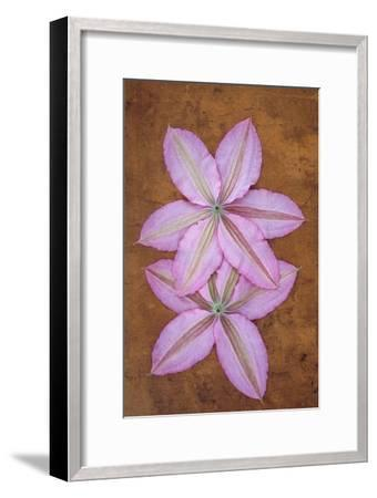 Purple Flowers-Den Reader-Framed Premium Photographic Print
