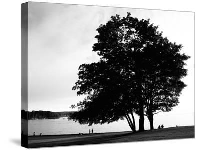 Figure in the Distance in Landscape-Sharon Wish-Stretched Canvas Print