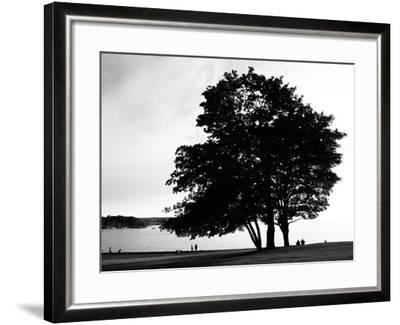 Figure in the Distance in Landscape-Sharon Wish-Framed Photographic Print