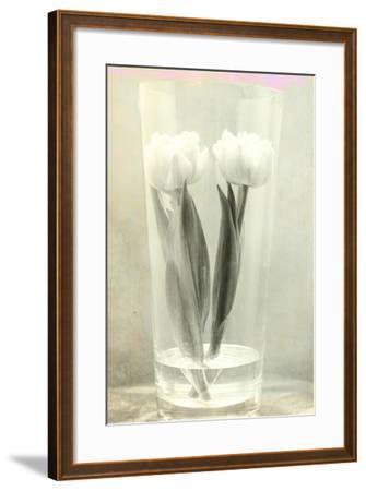 White Tulips-Mia Friedrich-Framed Photographic Print