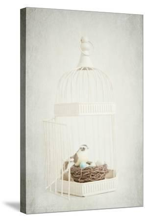 Small Birdcage-Susannah Tucker-Stretched Canvas Print