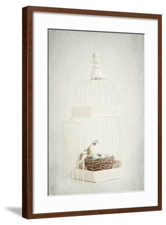 Small Birdcage-Susannah Tucker-Framed Photographic Print