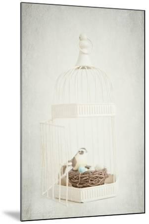Small Birdcage-Susannah Tucker-Mounted Photographic Print