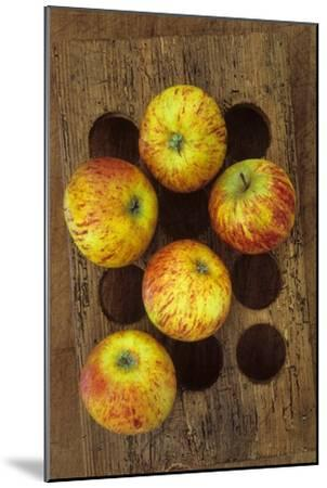Five Apples-Den Reader-Mounted Premium Photographic Print