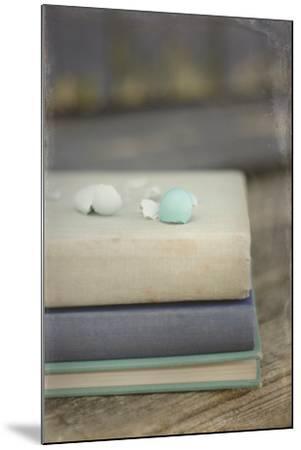 Boken Robin's Egg on Vintage Books-Elizabeth Urqhurt-Mounted Photographic Print