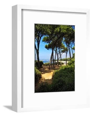 Ile Sainte Marguerite - Cannes - France-Philippe Hugonnard-Framed Photographic Print