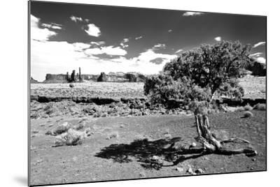 Landscape - Monument Valley - Utah - United States-Philippe Hugonnard-Mounted Photographic Print
