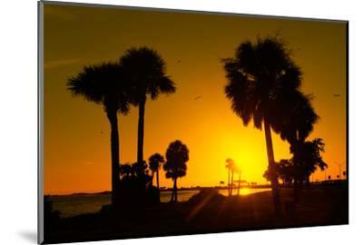 Silhouette Palm Trees at Sunset-Philippe Hugonnard-Mounted Photographic Print