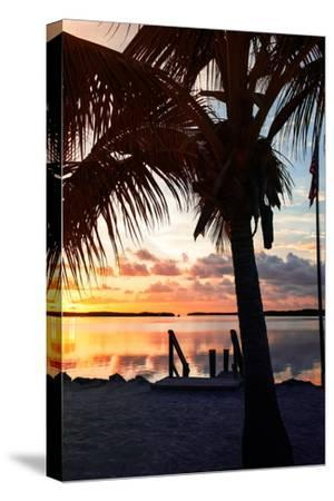 Silhouette at Sunset - Florida-Philippe Hugonnard-Stretched Canvas Print