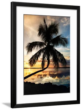 Palm Paradise at Sunset - Florida - USA-Philippe Hugonnard-Framed Photographic Print
