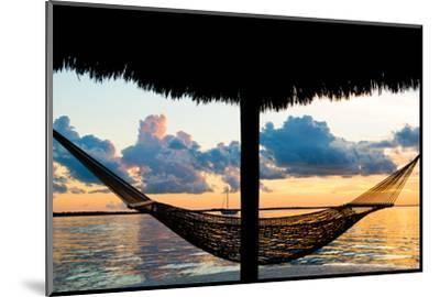 The Hammock at Sunset - Miami - Florida-Philippe Hugonnard-Mounted Photographic Print