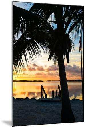 Silhouette at Sunset - Florida-Philippe Hugonnard-Mounted Photographic Print