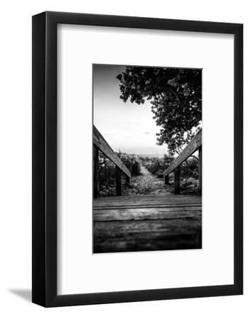 Boardwalk on the Beach at Sunset - Florida-Philippe Hugonnard-Framed Photographic Print
