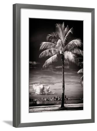 Palm Tree overlooking Downtown Miami - Florida-Philippe Hugonnard-Framed Photographic Print