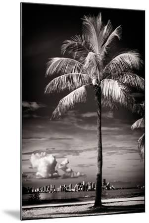 Palm Tree overlooking Downtown Miami - Florida-Philippe Hugonnard-Mounted Photographic Print