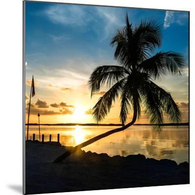 Sunset of Dreams - Florida - USA-Philippe Hugonnard-Mounted Photographic Print