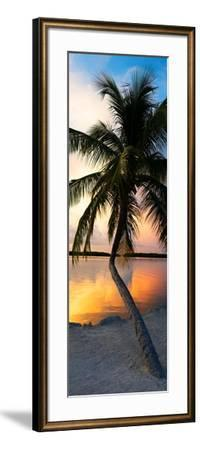 Palm Tree at Sunset - Florida-Philippe Hugonnard-Framed Photographic Print