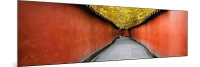 China 10MKm2 Collection - Alley Bamboo-Philippe Hugonnard-Mounted Photographic Print