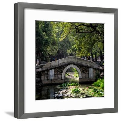 China 10MKm2 Collection - Asian Bridge-Philippe Hugonnard-Framed Photographic Print