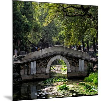 China 10MKm2 Collection - Asian Bridge-Philippe Hugonnard-Mounted Photographic Print