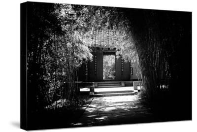 China 10MKm2 Collection - Bamboo Forest-Philippe Hugonnard-Stretched Canvas Print