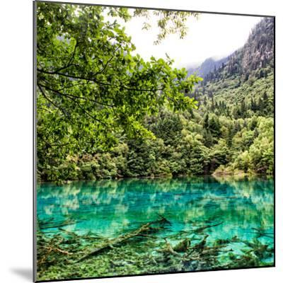 China 10MKm2 Collection - Beautiful Lake in the Jiuzhaigou National Park-Philippe Hugonnard-Mounted Photographic Print