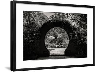 China 10MKm2 Collection - Chinese Garden-Philippe Hugonnard-Framed Photographic Print