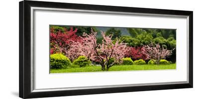 China 10MKm2 Collection - Beautiful Asian Garden-Philippe Hugonnard-Framed Photographic Print