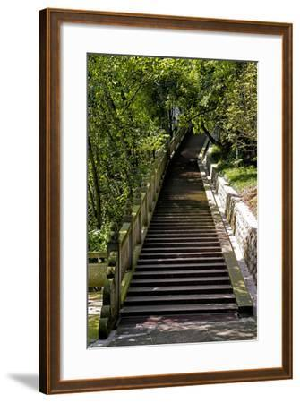 China 10MKm2 Collection - Stairway in the Forest-Philippe Hugonnard-Framed Photographic Print